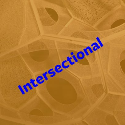 Intersectional Working Group